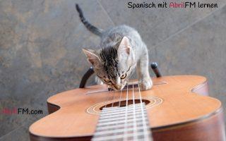 11. Die Katze- Spanisch mit AbrilFM lernen