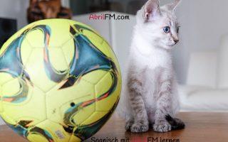 153. Die Katze- Spanisch mit AbrilFM lernen