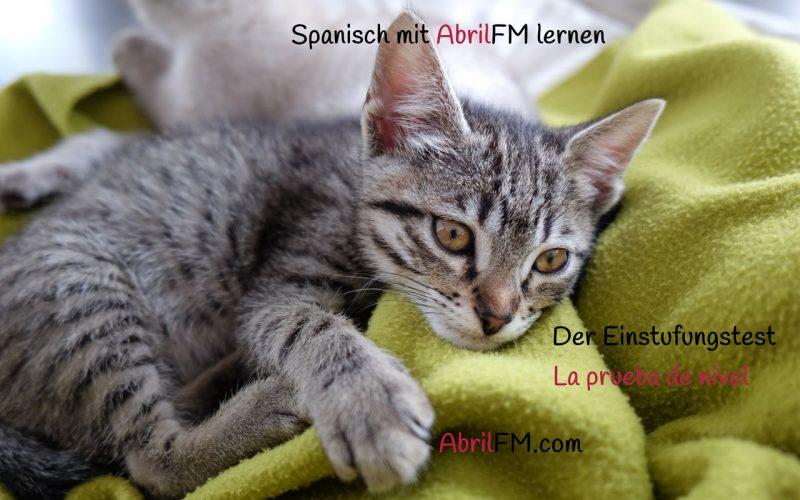163. Die Katze- Spanisch mit AbrilFM lernen