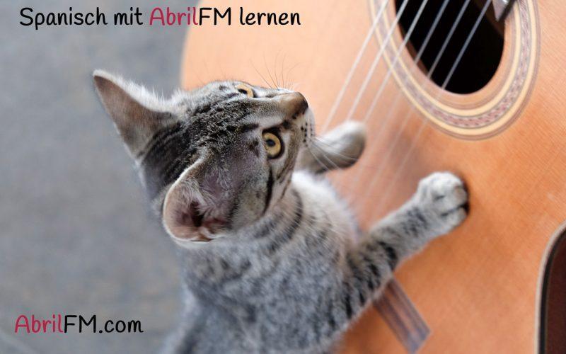 61. Die Katze- Spanisch mit AbrilFM lernen