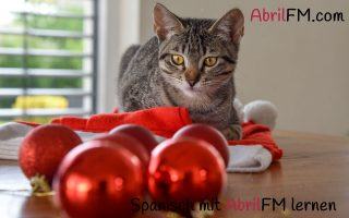 66. Die Katze- Spanisch mit AbrilFM lernen