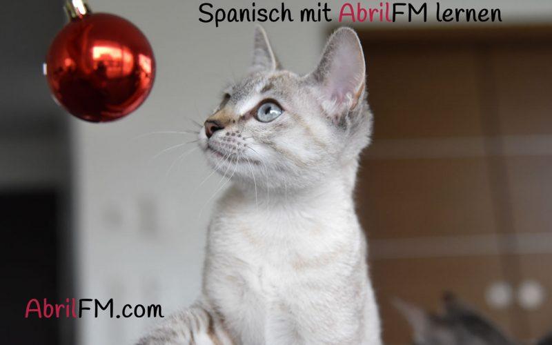 67. Die Katze- Spanisch mit AbrilFM lernen