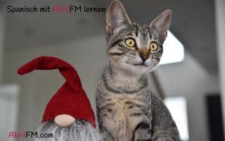 68. Die Katze- Spanisch mit AbrilFM lernen