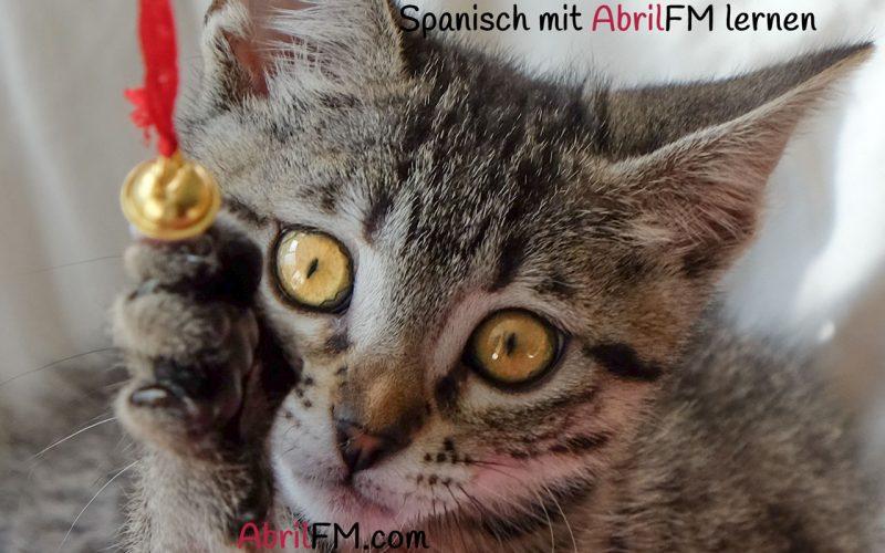 86. Die Katze- Spanisch mit AbrilFM lernen